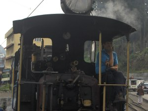 The Engine Driver of the Darjeeling Toy Train